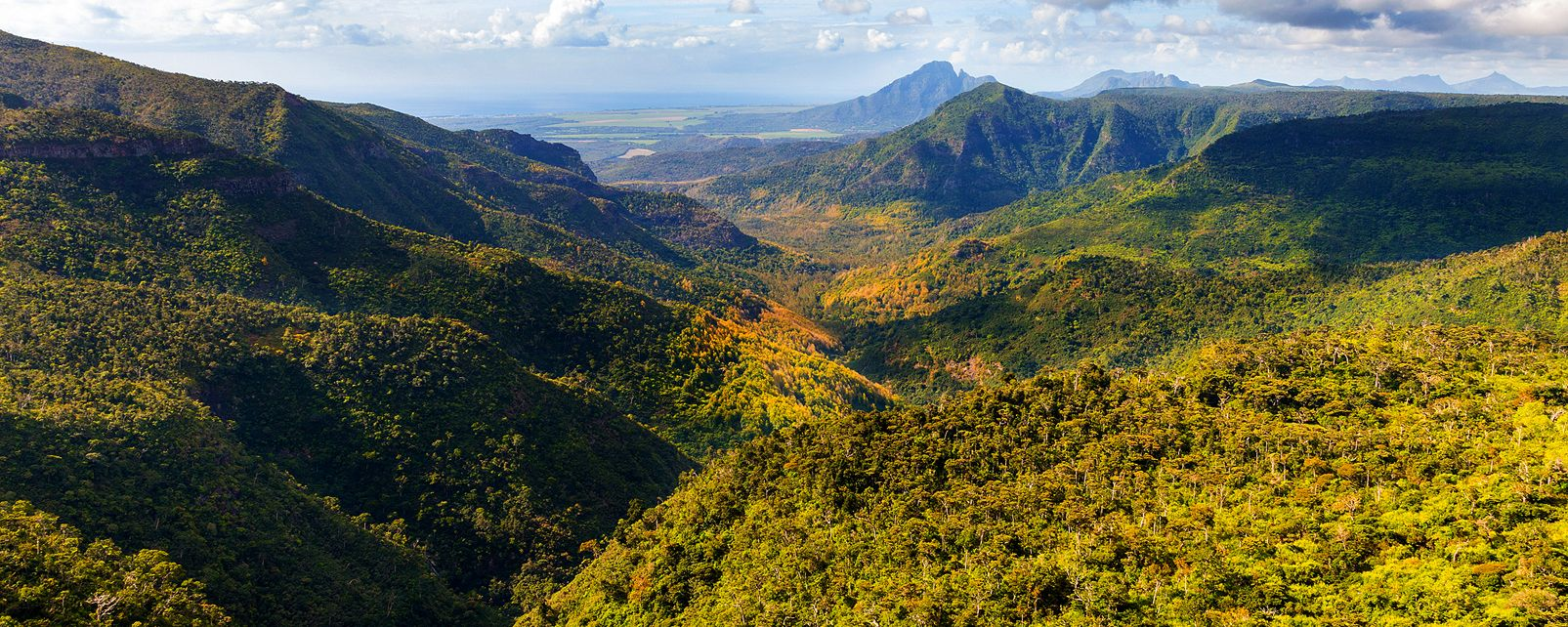 Black River Gorges, National Park, Mauritius